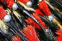 Trout Roosters